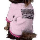 Central Park Nevado Camisetas De Perro