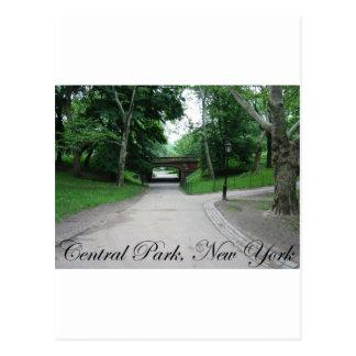 Central Park, New York 2 Postcard