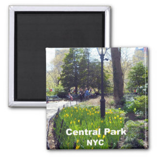 Central Park, New York City 2 Inch Square Magnet