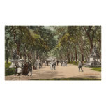 Central Park New York City de la postal del vintag Póster