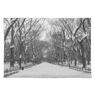 Central Park New York City in Winter - Placemat Cloth Place Mat