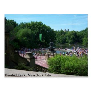 Central Park, New York City Postcard