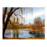 Central Park, New York Postcard