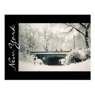 central park new york postcard