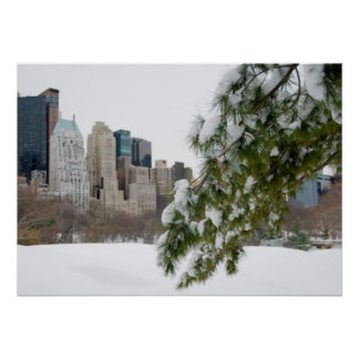 Central Park & New York skyline in Winter - Poster