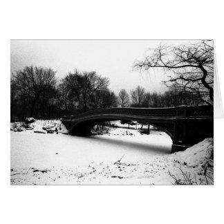 Central Park NYC del invierno del puente del arco Tarjeta De Felicitación