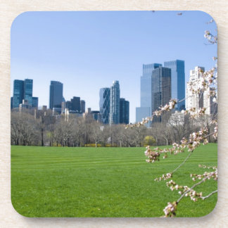 Central Park NYC in Spring - Coaster