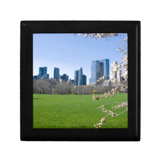 Central Park NYC in Spring - Keepsake Jewelry Box