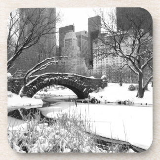 Central Park NYC in Winter - Coaster