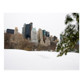 Central Park, NYC in Winter - postcard