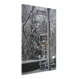 Central Park NYC New York City Winter Snow Photo Canvas Print