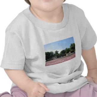Central Park, NYC Camisetas