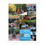 Central Park - NYC Postcard
