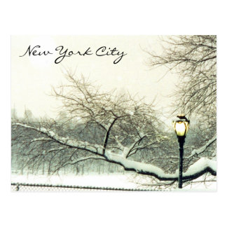 central park nyc tree postcard