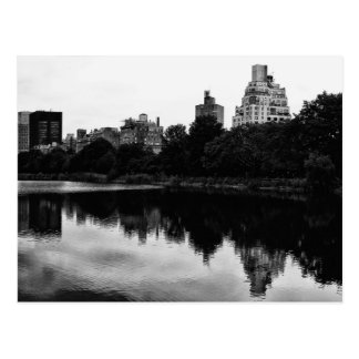 Central Park, NYC View in Black & White Postcard