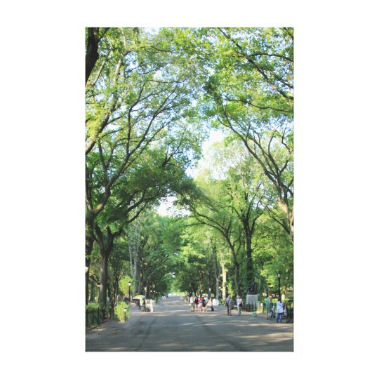 Central Park: Poet's Walk in the Summer Canvas Print