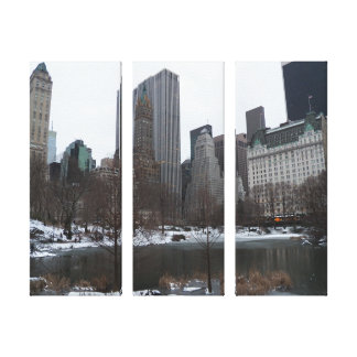Central Park Pond Jan 2012, NYC Wrapped Canvas