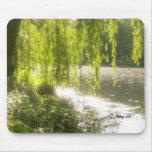 Central Park Pond Mouse Pad
