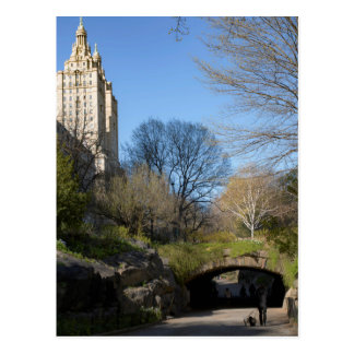 Central Park, postal de New York City