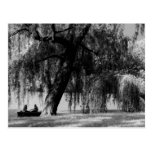 Central Park Rowboats Post Cards
