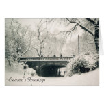 central park season's greetings greeting cards