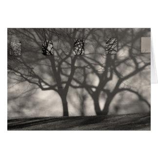 Central Park Shadows Note Card