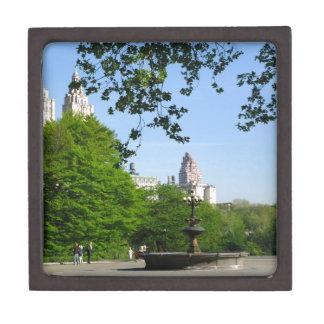 Central Park Skyline Premium Trinket Box