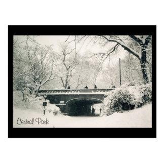 central park snow postcard