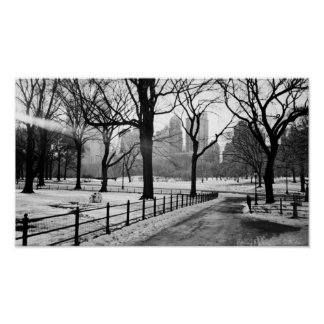 Central Park Snow Poster