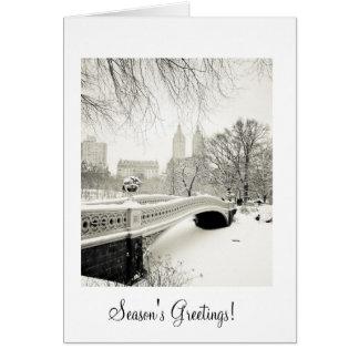 Central Park Snow Season's Greetings Card