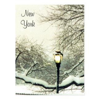 central park snow tree postcard