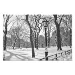 Central Park Snowfall B&W Photo Print