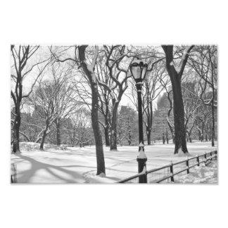Central Park Snowfall B&W Photograph
