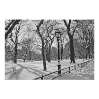 Central Park Snowfall B W Print