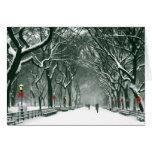 Central Park Snowy Path Greeting Card