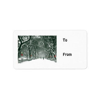 Central Park Snowy Path Label
