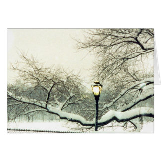 central park snowy tree greeting card