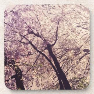 Central Park Spring Trees Beverage Coaster