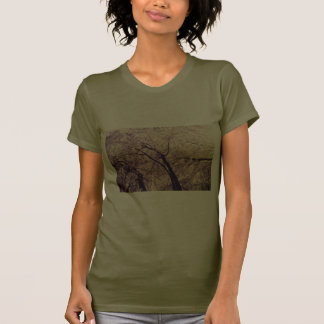 Central Park Spring Trees Shirts