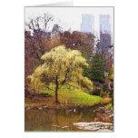 Central Park Tree at Pond Card
