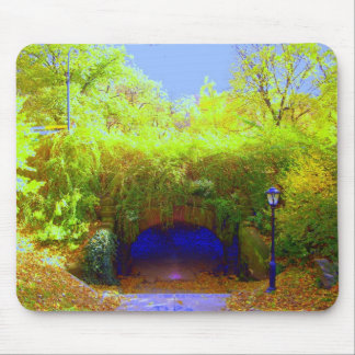 Central Park Tunnel 2006 Mouse Pad