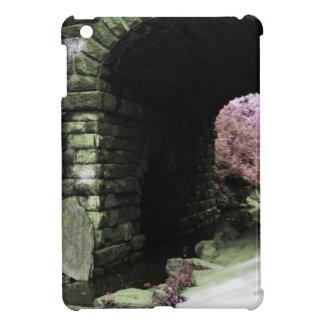 Central Park Tunnel iPad Mini Covers