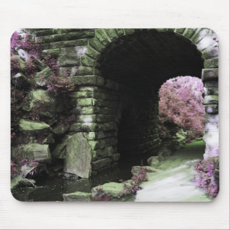 Central Park Tunnel Mousepad
