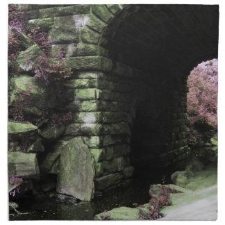 Central Park Tunnel Cloth Napkin