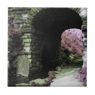 Central Park Tunnel Ceramic Tile