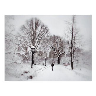 Central Park White Out Postcard