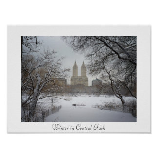 Central Park - Winter - New York City Poster