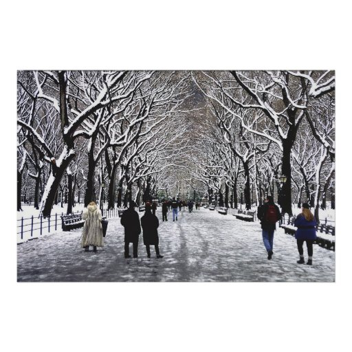 Central Park Winter NYC Poster