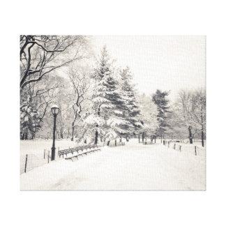 Central Park Winter Path - New York City Canvas Print