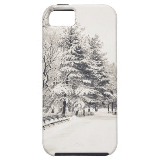 Central Park Winter Path - New York City iPhone 5 Cases